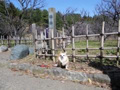 2010_0314.jpg