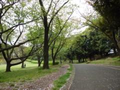 2012_0422_3.jpg
