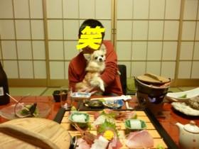 2013_0308_3.jpg