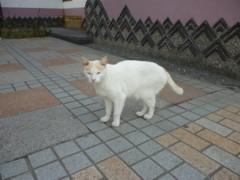 2011_0925_1.jpg