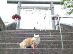2012_0520_1.jpg